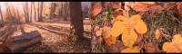 107_bildschirmfoto-2013-11-15-um-220622.png